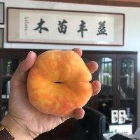 这样手掰两开的桃子你们见过吗?和冬枣一样大