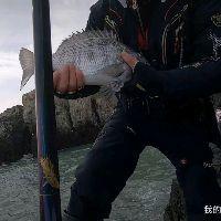 #矶钓#今天上了一个连转身都困难的钓位,结果钓了两条不知名的鱼!