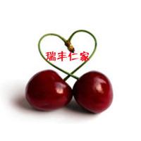 #瑞丰大樱桃苗#大樱桃果树秋季施肥不要用鸡粪