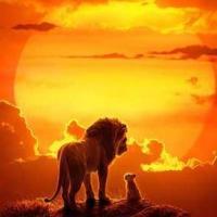 #动物世界#狮子和斑马一起喝水 没想到它们居然做这事